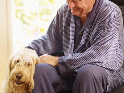 Perros para personas mayores. ¿Cuál es más indicado?